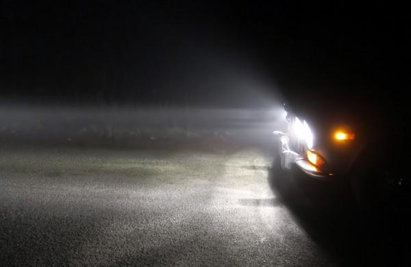 fog-010