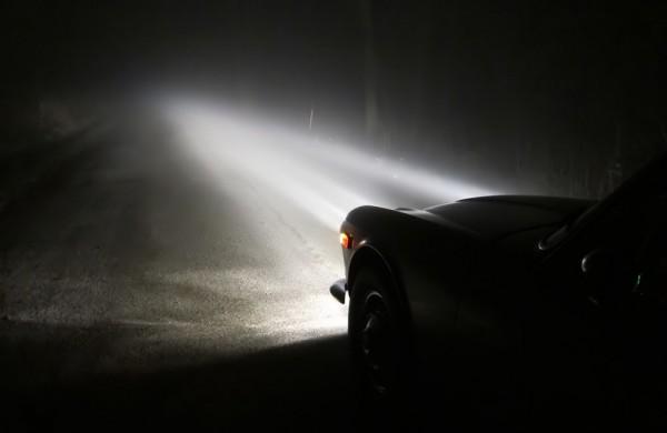 fog-011
